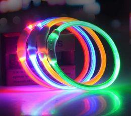 Night Glowing Plastic Australia - LED Plastic Pet Dog Collar Night Safety LED Light Flashing Glow in the Dark Small Dog Pet Leash Dog Collar Flashing Safety Collar luminous