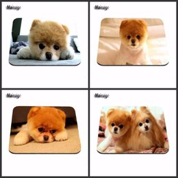 Desk cameras online shopping - Hot Game Printing Mousepad cute dogs Boo posing for the camera Gaming Desk Mat Personalized Durable Mouse Pads