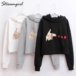 a92f073ba1c58 2019 Printed Crop Hoodies Sweatshirts Hooded Sweatshirt Crop Top Hoodie  Femme Short Sweatshirts Pullover Sweatshirt Female