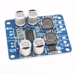 $enCountryForm.capitalKeyWord Australia - Freeshipping 10PCS DC 12V-24V TPA3118 60W Mono Digital Audio Power Amplifier Board Amp Module