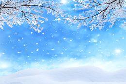 custom photography prop 2019 - SHENGYONGBAO Art Cloth Custom Photography Backdrops Prop Snow Winter Theme Photography Background 18116-17 cheap custom