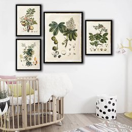 $enCountryForm.capitalKeyWord NZ - HD Print Painting Minimalist Poster Wall Pictures Green Plant Fruit Nordic Style Canvas Artwork For Home Wedding Decoration