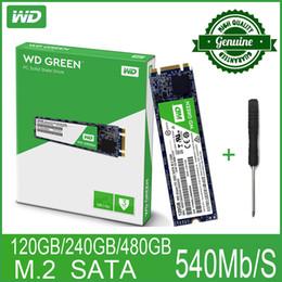 ssd internal 2019 - m.2 2280 WD Green PC SSD 120 240GB 480GB Internal Solid State Hard Drive Disk M.2 SATA 2280 540MB S 120G 240G for discou
