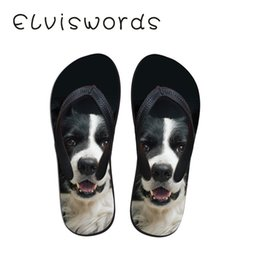 $enCountryForm.capitalKeyWord Australia - omen Slippers Summer Flip Flops Beach Flat Dog Printed Cute Small Fresh Fashion Casual Footwear Home Non-Slip Slipper