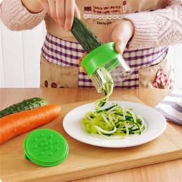 $enCountryForm.capitalKeyWord Australia - Vegetable Portable Slicer Handheld Peeler Stainless Steel Spiral Slicer for Potatoes Spaghetti Cutter Carrot Grater kitchen tools