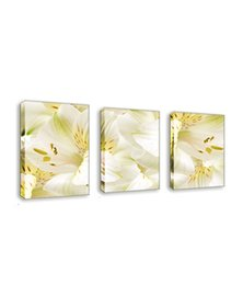 Painting Lily Australia - 3 Panels Canvas Prints Wall Art Lily Flowers Picture Painting for Home Bedroom Decor No Framed
