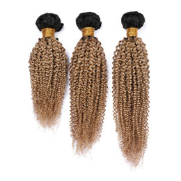 Honey brown curly Hair online shopping - Honey Blonde Ombre Kinky Curly Indian Human Hair Weave Bundles Gram B Dark Root Light Brown Ombre Hair Wefts Kinky Curly