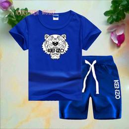 $enCountryForm.capitalKeyWord Australia - KNZO Tiger Little Kids Sets 1-7T Kids T-shirt Short Pants 2Pcs sets Baby Boys Girls 95% Cotton Tiger Printing Style Summer Sets