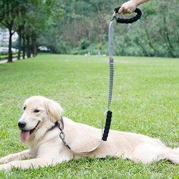 dog walking chain 2019 - TPFOCUS 120-140cm Pet Dog Collar Harness Leash Multifunction High Stretch Pet Leash Chain for Outdoor Dogs Training Walk