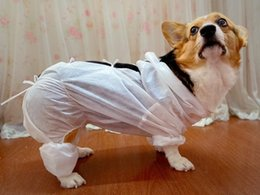 Wholesale Cheapest Pet protective clothing dog protective clothes for small and large dogs all sizes in stock