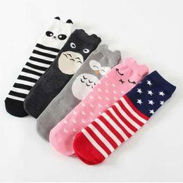 $enCountryForm.capitalKeyWord Australia - Boys Girls Infant Socks Baby Lovely Cotton Sock Knee High Girl Leg Warm Autumn Kids Socks Knee Spring Autum Cloth