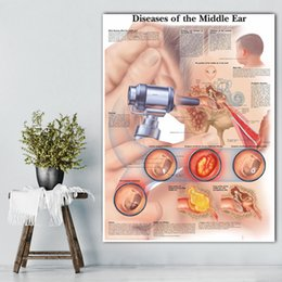 office panels NZ - 1 Panel Home Decoration Diseases Canvas Prints Middle Ear Poster Painting Anatomy Office Wall Artwork Medical Education Modular Picture