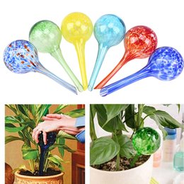 $enCountryForm.capitalKeyWord Australia - Green Potted Plants Glass Watering Bulbs Automatic Watering Globes Flowers Drip Garden Watering Tools Colorful W8617