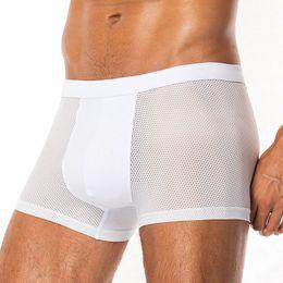 $enCountryForm.capitalKeyWord Australia - DEWVKV Sexy Underwear Men Mesh Shorts Plus Size Solid Men's Clothing Boxers Panties Shorts Sexy Gay Mens 2019 ZMQ