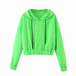 sweat à capuche recadrée vert achat en gros de-news_sitemap_homeSweats à capuche Femmes Mode Zipper Sweat à capuche solide Batwing manches longues Casual Crop Top Sweat shirt vert Femme Outwear
