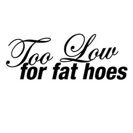 ho cars UK - 16*6.1cm Too Low For Fat Hoes Vinyl Decal Sticker Motorcycle SUVs Bumper Car Window Laptop Car Stylings Car Sticker
