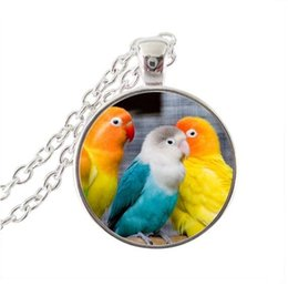 Glasses Face Long Australia - 2019 pendant vintage parrot pendant necklace handmade women necklace glass dome bird photo jewelry necklace long