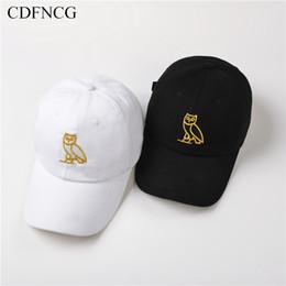 Опт 2019 мода модный поп хип-хоп бейсболка вышивка Сова Солнце папа шляпа для мужчин женщин уличная открытый шапки Casquette
