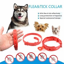 Dog collars flea online shopping - Dogs Cats Effective Anti Fleas Collar Pet Effective Anti Fleas Ticks Mosquitoes Collar Cat Adjustable Repellent Collar