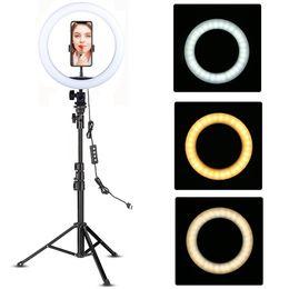 YouTube Makeup Fill Beleuchtung Video Live Shooting LED Ringlicht 10 Zoll mit Telefonhalter Stativständer Selfie Circle Tikok Lampe im Angebot