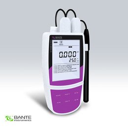 pc analyzer tester Australia - BRAND BANTE Professional portable chloride ion meter Tester analyzer handheld data store USB to PC