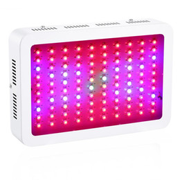 led grow ir uv Canada - Newest 300w 600w 800w 1000w 1200w 1500w 1800w 2000w Double Chip Led Grow Light Full Spectrum Red  Blue  Uv  Ir For Indoor Plants