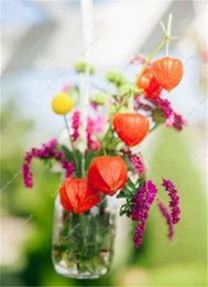 flower seeds sale NZ - Heirloom Physalis Seeds Sweet Fruit & Vegetable Seeds Organic Chinese Lanterns Plant Succulent Flowerpots Flower Street 100 Pcs for sale