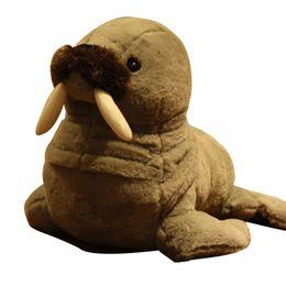 $enCountryForm.capitalKeyWord UK - cute aquarium animal sea seal plush toy doll cute doll walrus doll for children gift deco teaching props 38cm DY50568