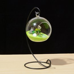 $enCountryForm.capitalKeyWord Australia - Spiral Ornament Display Stand Iron Hanging Stand Rack Holder for Hanging Glass Globe Air Plant Terrarium Garden Decorations CCA11458 100pcs