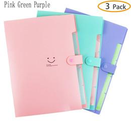 Toptan satış Plastik Genişleyen Dosya Klasörleri Akordeon Belge Organizatör A4 Mektubu Boyutu Yapış Kapatma ile Okul ve Ofis için, pembe, Yeşil, Menekşe 3-Pack