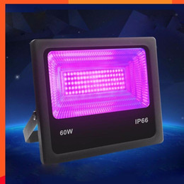 $enCountryForm.capitalKeyWord UK - 4pcs lot 30W 60W UV LED Black Light Floodlight Ultra-Viole Waterproof Ip66 Ktv Bar Haunted House Uv Fluorescence Effect Lamp