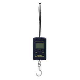 China 40kg Mini Digital Scale for Fishing Lage Travel Weighting Steelyard Hanging Electronic Hook Scale Kitchen Weight Tool supplier kitchen scales hook suppliers
