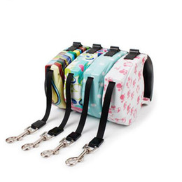 $enCountryForm.capitalKeyWord Australia - CHUN0318 Hot 2019 New 5m's Long Retractable Dog Leash For Small and Large Dogs Automatic Nylon Pet Leash Lead for Running Jogging