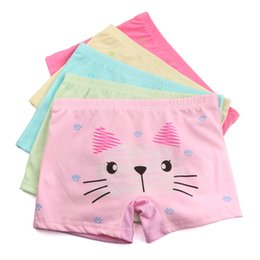 girl boxers shorts NZ - Cartoon cat Girls Panties Teenager Girls underwear Children underwear baby girls boxers shorts underpants 3-12year
