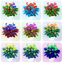 Satış 100 adet nadir renk antoryum tohumları, andraeanum taneleri, bonsai çiçek tohumları Balkon saksılar bahçe ev DIY için Saksı Bitki indirimde