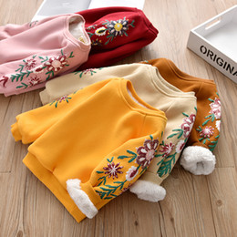 $enCountryForm.capitalKeyWord NZ - 2018 New Arrival Baby Girls Sweatshirts Autumn Winter thick warm Children hoodies long sleeves sweater for kids T-shirt clothes