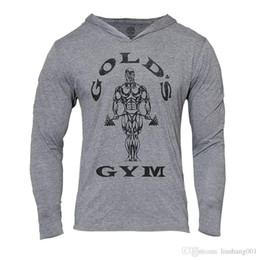 $enCountryForm.capitalKeyWord Australia - Mens Gym Hoodie Long Sleeve Bodybuilding Hoody Men Sports Suits Tank Top Muscle Shirts Cotton Assassins Creed Gold Gym 8809