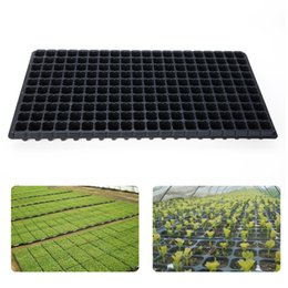 plant boxes NZ - 200 Cell Seedling Starter Tray Extra Strength Seed Germination Plant Flower Pots Nursery Grow Box Propagation For Garden