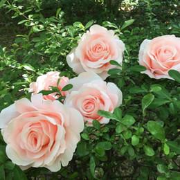 Rose Road wedding online shopping - 30pcs cm Silk Rose Flower Head Wedding Party Background Decor Road Led Flower Home DIY Artificial Decorative Fake Flower