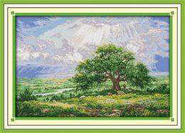 $enCountryForm.capitalKeyWord Australia - The wishing tree scenery home decor painting ,Handmade Cross Stitch Embroidery Needlework sets counted print on canvas DMC 14CT  11CT