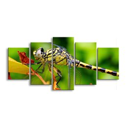Art Canvas Prints Australia - 5 pieces high-definition print dragonfly canvas painting poster and wall art living room picture QIT5-001