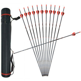 "$enCountryForm.capitalKeyWord Australia - 6 Pack 31"" Archery Hunting Mix Carbon Arrows Nocks Fletches Target Points with Arrow Quiver for Recurve Bow Longbow Takedown Bow"