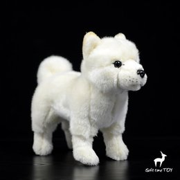 China Cute Children Toy Real Life Plush Akita Dog Doll Birthday Gifts For Boys And Girls good quality supplier real good toys suppliers