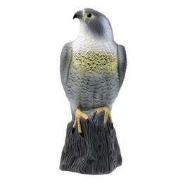 Bird Hawk NZ | Buy New Bird Hawk Online from Best Sellers