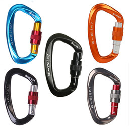 Rock masteR online shopping - 25KN Professional Carabiner D Shape Climbing buckle Security Safety Master Lock Outdoor Rock Climbing Buckle Equipment
