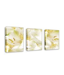 $enCountryForm.capitalKeyWord Australia - 3 Piece Canvas Painting White Lily Flower Picture Print on Canvas Wall Art for Home Living Room Decoration with Wooden Framed Artworks
