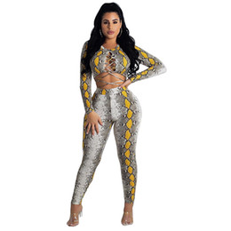 1b030bf718c830 Snake Print Sexy 2 Piece Set Women Long Sleeve Lace Up Crop Top and Pant  Suit Club Party Matching Sets 2 Piece Outfits for Women