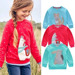 Clothing Dropshipping Australia - Children Baby Kid Girl Boy Embroidery Animal Rabbit Cat Sweatshirt Tops Clothes Dropshipping Maglione per bambini#40