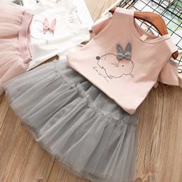 Rabbit Suits Australia - Girls Clothing Sets New Summer Fashion Style Cartoon Rabbit Printed T-Shirts+Pink Dress 2Pcs Girls Clothes Sets Girls'Yarn Skirt Suit C22
