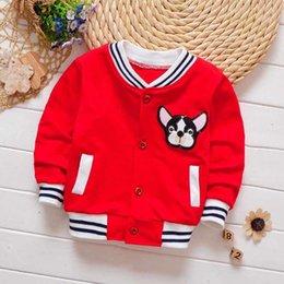 3aa81ebfe7c6 Baby Boys Baseball Jacket Australia